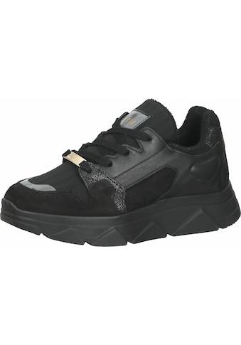 STEVE MADDEN Sneaker »Veloursleder/Synthetik« kaufen