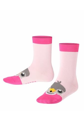 FALKE Socken Little Falcon (1 Paar) kaufen