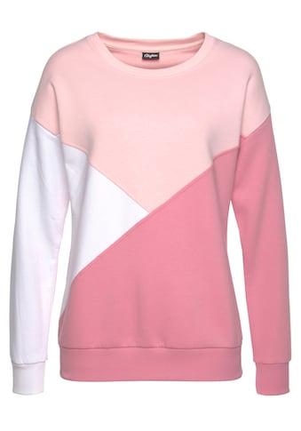 Buffalo Sweatshirt, mit dreifarbigem Design kaufen