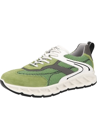 IGI & CO Sneaker »Leder/Mesh« kaufen