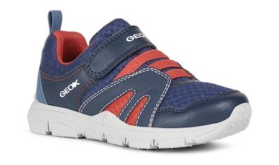Geox Kids Sneaker »NEW TORQUE BOY«, mit gepolstertem Schaftrand kaufen
