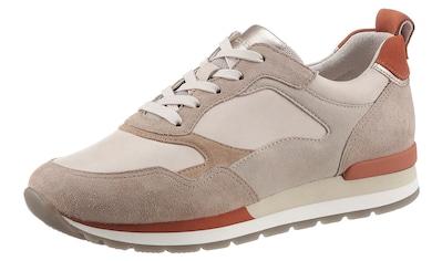 Gabor Keilsneaker »YORK«, in Weite G (=weit) kaufen