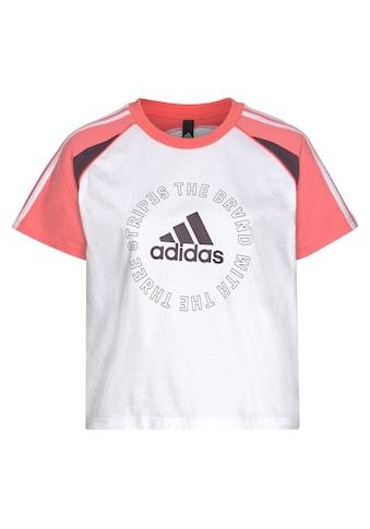 adidas Performance T-Shirt »LOGO TEE« kaufen