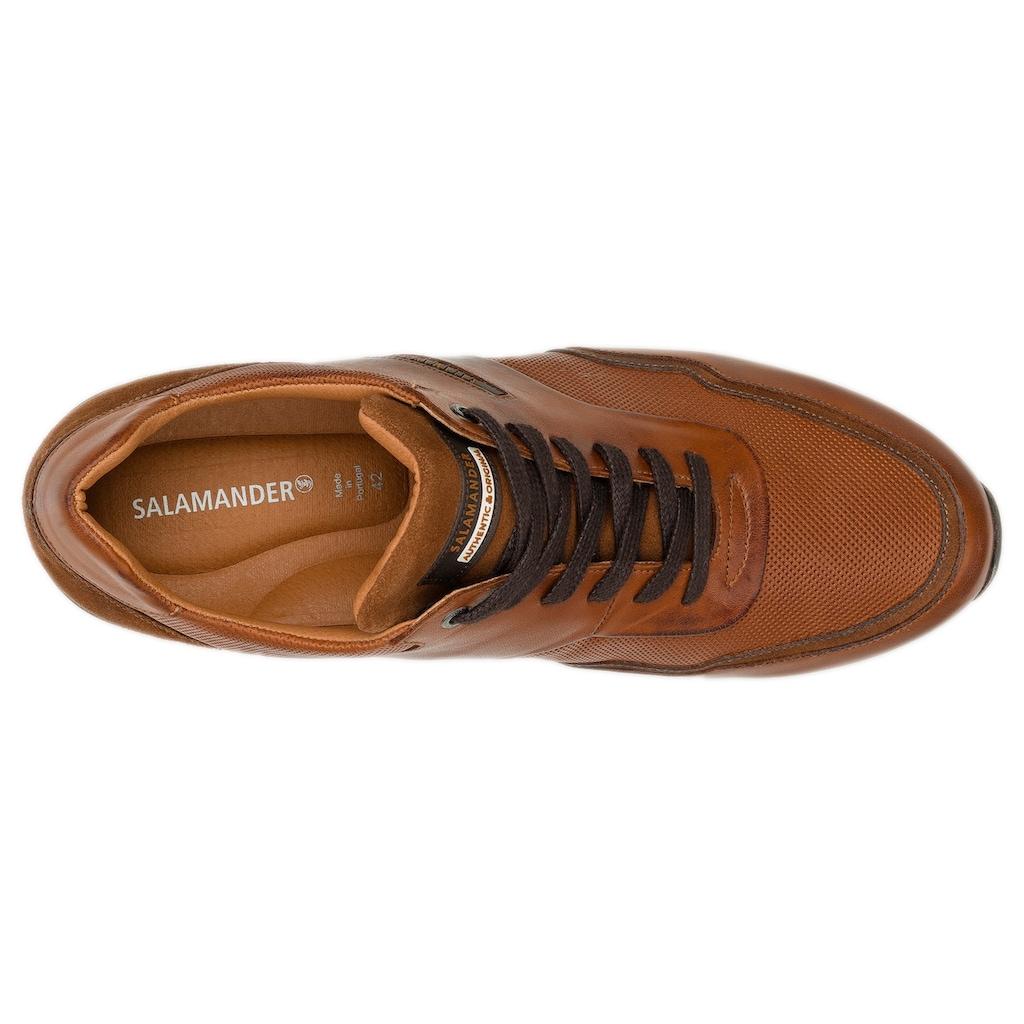 Salamander Sneaker »Avato«