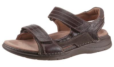 Clarks Sandale »Nature Trek«, mit weich gepolsertem Fersenriemen kaufen