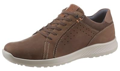 Jomos Sneaker »Campus«, mit Reißverschluss kaufen