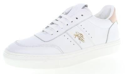 U.S. Polo Assn Sneaker »Avery«, mit trendiger Ziernaht kaufen